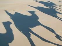 De Trein van de kameel Royalty-vrije Stock Fotografie
