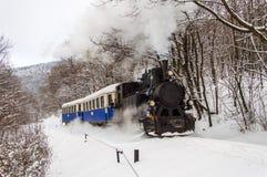 De trein van de nostalgiestoom Stock Foto