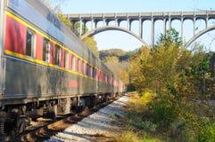 De trein van de passagier onder overspannen brug Stock Foto