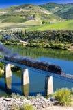 De trein van de stoom Stock Fotografie