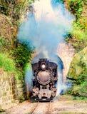 De trein van de stoom smal-maat royalty-vrije stock fotografie