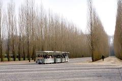De trein van de toerist Royalty-vrije Stock Afbeelding