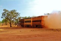 De Trein van de veeweg Stock Afbeelding