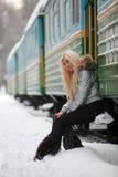 De trein van de winter stock afbeelding
