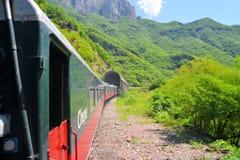 De trein van Gr Chepe in de Kopercanion, Mexico royalty-vrije stock afbeelding