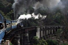 De trein van het stuk speelgoed in bergen Nilgiri Stock Fotografie