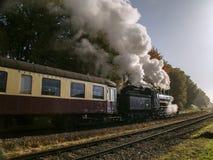 De trein van de museumstoom van ZLSM-looppas regelmatig in Zuid-Limburg royalty-vrije stock afbeeldingen