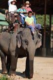 De Trekking van de olifant, Thailand Stock Foto's