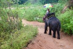 De trekking van de olifant in Thailand stock foto