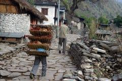 De Trekking van Himalayagebergte royalty-vrije stock afbeeldingen