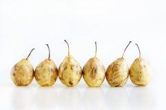 De tribune van peren in een lijn Stock Afbeeldingen