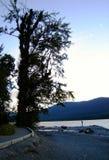 De tribunes van de mens op bank van rivier Stock Foto's