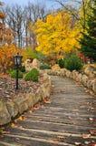 De trillende aard van de herfstbomen Royalty-vrije Stock Foto