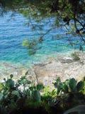 De trillingen van de de zomermiddag langs rotsachtige kustlijn royalty-vrije stock foto's