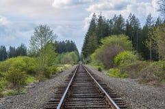De trog van de spoorweg het bos Stock Foto's