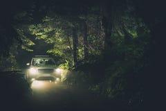 De Trog van de nachtaandrijving het Bos stock fotografie
