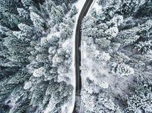 De trog van de de winterweg een bos met bomen in sneeuw worden behandeld die Royalty-vrije Stock Fotografie