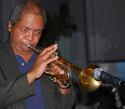 De trompetter van de jazz. Stock Fotografie
