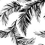 De tropische achtergrond van het wildernis bloemen naadloze patroon met palm le Royalty-vrije Stock Fotografie