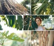 De tropische collage van tuininstallaties met rood haarmeisje royalty-vrije stock fotografie