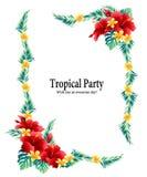 De tropische diameter van de bloemdecoratie, vector illustratie