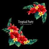 De tropische diameter van de bloemdecoratie, royalty-vrije illustratie