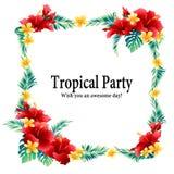 De tropische diameter van de bloemdecoratie, stock illustratie