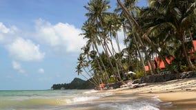De tropische idyllische achtergrond van de eilandvakantie Exotische zandige strand en palm op overzeese kust bij zonnige dag Lang stock videobeelden