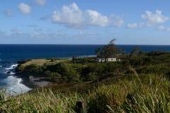 De tropische kustlijn van Hawaï Stock Afbeelding