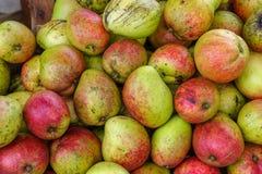 De tropische mango van de fruitappel stock foto's