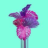 De tropische stijl van bladerenduotone in roze, violet en turkoois stock fotografie