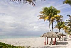 De tropische toevlucht van het de zomerstrand met palmen en c Stock Foto