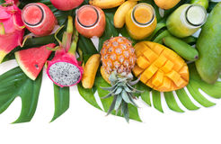 De tropische vlakte legt hoogste menings tropische kleurrijke vruchten royalty-vrije stock foto