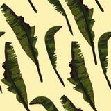 De tropische zomer die naadloos patroon met het blad van de palmbanaan schilderen stock illustratie