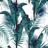 De tropische zomer die naadloos vectorpatroon met het blad en de installaties van de palmbanaan schilderen vector illustratie