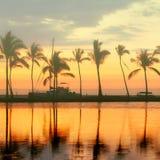 De tropische zonsondergang van het paradijsstrand met palmen Royalty-vrije Stock Fotografie