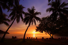 De tropische Zonsondergang van het Strand Stock Foto's