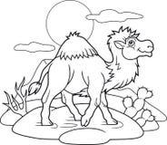 De trotse kameel gaat door de woestijn vector illustratie