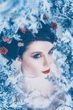 De trotse majestueuze koningin van de winter en eeuwige koude in lange witte kleding met donker verzameld haar versierde met bevr stock fotografie