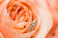 De trouwringen met roze namen toe royalty-vrije stock fotografie