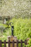 De tuin Royalty-vrije Stock Afbeeldingen