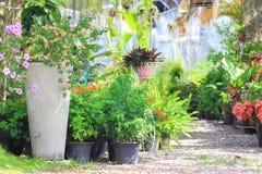 De tuin Stock Afbeelding