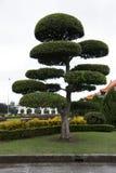 De tuin bij Nationale Concertzaal in Taipeh stock afbeeldingen