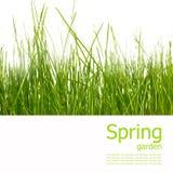 De tuin en de lente van de collage Royalty-vrije Stock Afbeelding