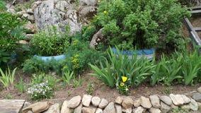 De tuin in Siberië royalty-vrije stock afbeeldingen