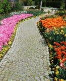 De tuin van de bloem Royalty-vrije Stock Foto's