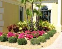 De Tuin van de bloem Stock Afbeelding