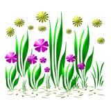De tuin van de bloem op wit Royalty-vrije Stock Foto's