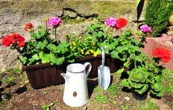 De tuin van de de bloemdoos van de installatie stock afbeelding