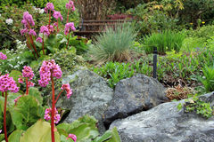 De Tuin van de de lentebloem royalty-vrije stock afbeeldingen
